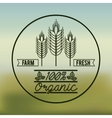 organic product design vector image