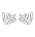 angel wings isolated white feather wing of bird vector image vector image