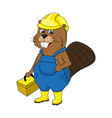 animation beaver in an image of the master repair vector image vector image