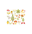 collection of forest design elements herbs vector image vector image