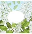 Floral card with white lilacs on blue background vector image vector image