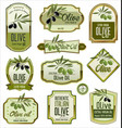 olive labels vector image vector image