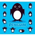 Penguin character on a blue background vector image