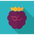 Raspberry flat icon with long shadow vector image vector image