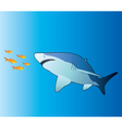 shark and tropical fishes vector image vector image