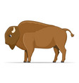 american bison animal on a white background vector image vector image