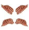 Bird Wing Set vector image vector image
