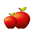 fresh organic apples on white background vector image