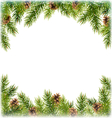 Green Christmas Tree Pine Branches with Pinecones vector image vector image