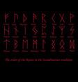 red rune metal runes vector image vector image