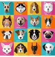 set flat dogs icons vector image