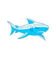 shark predator logo design outline isolated vector image