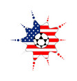 soccer ball on an american emblem vector image