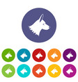collie dog set icons vector image vector image