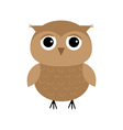 Cute owl bird character Flat design Isolated White vector image vector image