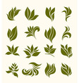 set silhouettes stylized leaves vector image vector image