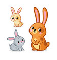 with collection cute hares vector image