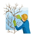Young man trimming a tree with garden clippers vector image vector image