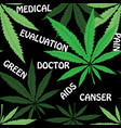 cannabis leafs on blur rastafarian background vector image vector image