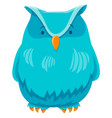 owl bird funny animal cartoon character vector image