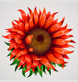 realistic beautiful flower red flower summer or vector image vector image