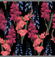 seamless patterns with delphinium gladiolus vector image vector image