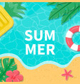 summer background with tropical leaves vector image