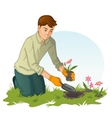 Young man planting flowers in garden vector image vector image