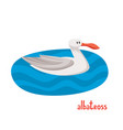 albatross on cold sea in cartoon style vector image