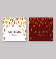autumn leaves banners set with white and burgundy vector image vector image
