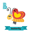 Butterfly B letter Cute children animal alphabet vector image