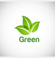 green leaf organic nature logo vector image vector image