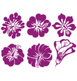 Hibiscus silhouettes set vector image vector image