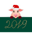 pig is the symbol of the new 2019 vector image vector image
