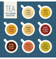 Tea varieties and brewing instructions Steep time vector image vector image