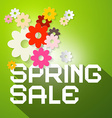 Spring Sale with Colorful Paper Cut Flowers vector image