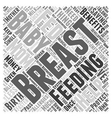 Benefits Of Breast Feeding Word Cloud Concept vector image vector image