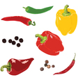 different peppers on a white background vector image vector image