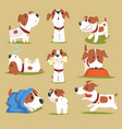 funny puppy daily routine set cute little dog in vector image vector image