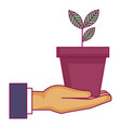 hand with plant in pot icon vector image vector image