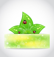 Ladybugs leaves banner vector image vector image