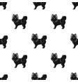 spitz single icon in black stylespitz vector image vector image