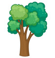 tree with many branches vector image vector image