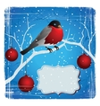 Bird on a tree in winter Christmas and New Years vector image
