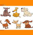 dogs and puppies cartoon characters set vector image vector image