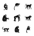 jungle monkey icon set simple style vector image vector image