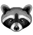 pixel raccoon portrait detailed isolated vector image vector image