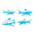 shark oceanic logo design outline set template vector image vector image