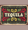 tequila vintage sign vector image vector image