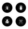 insects glyph icons set vector image